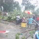 Warga bahu membahu bersihkan pohon yang tumbang akibat puting beliung / Foto : Istimewa / Tulungagung TIMES