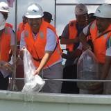 Kualitas Air di Malang Masuk Kategori Tak Layak Konsumsi