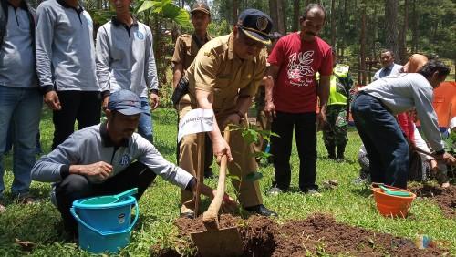 Plt Bupati Tulungagung, Maryoto Birowo menanam tanaman kopi di Jurang Senggani(foto : Joko Pramono/Tulungagungtimes)