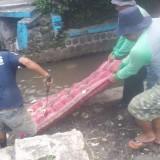 Bersihkan Saluran Air, Satgas DPUPR Kota Malang Temukan Dua Kasur Komplit dengan Bantal