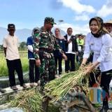Baru 18 Desa/Kelurahan di Kota Batu Tersertifikasi Organik, Tahun 2022 Target Pencapaian 100 Persen