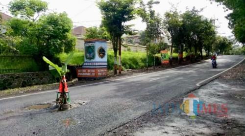 Salah satu jalan berlubang ditutup dengan menggunakan pohon pisang di depan SMA Selamat Pagi, (Foto: Ist)