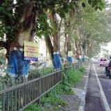 Bopeng Panji, dari Reklame Bodong Dipaku di Pepohonan sampai Jalan Berlubang