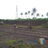 Tol Malang-Pandaan Capai 85 Persen, Temuan Situs Sejarah Munculkan Opsi Perubahan Trase Jalan