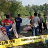 Jasad Mengapung di Sungai Brantas Hebohkan Warga Ngadiluwih