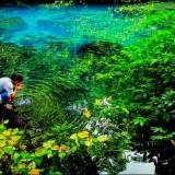 Bikin Cemas, 60 Sumber Mata Air Kabupaten Malang Menyusut