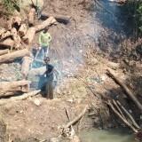 Lokasi sengketa penebangan pohon Sonokeling.