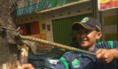 Tak Kenal Lelah, Polisi Taman Disperkim Kota Malang Tiap Hari Rutin Lakukan Pembersihan Paku di Pohon