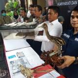 Polda Jatim saat menunjukkan barang bukti hewan langka.