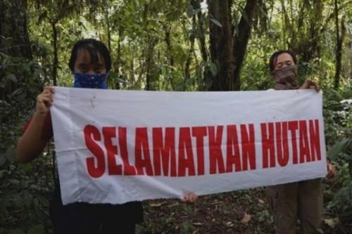 Kerusakan hutan lindung di Malang Selatan terus terjadi dikarenakan pembalakan liar serta alih fungsi lahan (profauna.net)