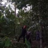 petugas Polsek melihat lokasi korban tertimpa buah durian