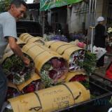 Bunga mawar milik Yuliati suplier dari dusun Brumbung Kota Batu yang akan dikirim ke Pulau Bali (Luqmanul Hakim/Malang Times)