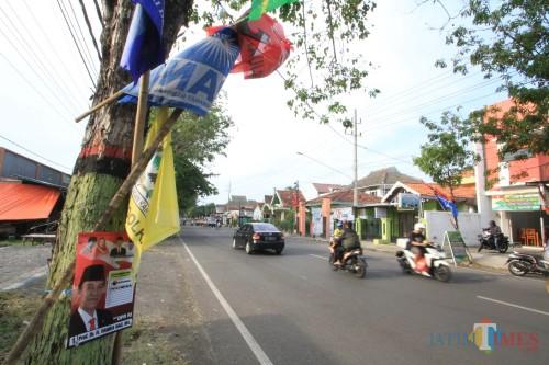 APK dan bendera parpol yang dipaku di pohon di Jalan Tjokroaminoto Kota Probolinggo.  (Agus Salam/Jatim TIMES)