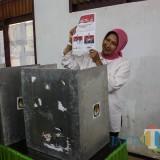Wali Kota Batu Dewanti Rumpoko menunjukkan surat suara sebelum mencoblos dari balik bilik suara (Luqmanul Hakim/Malang Times)