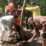 DLHKP Kota Kediri bersama komunitas sepeda tua saat menanam pohon di area sumber jiput. (eko Arif s /JatimTimes)