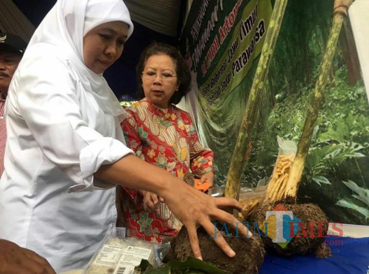 Gubernur Jawa Timur Khofifah Indar Parawansa