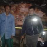 Garong Pohon Milik Perhutani saat Sahur, Pria Ini Dibekuk Polisi