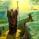 Asyura, dari Penciptaan Manusia Pertama, Pengampunan, dan Pertolongan Tuhan