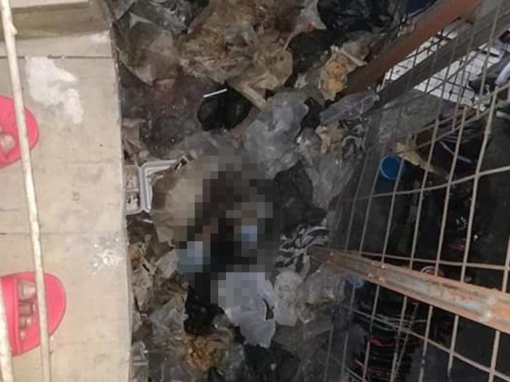 Image Result For Mutilasi Pasar Besar Malang