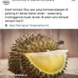 Aroma Durian Dikira Gas Bocor, Ratusan Orang Harus Dievakuasi