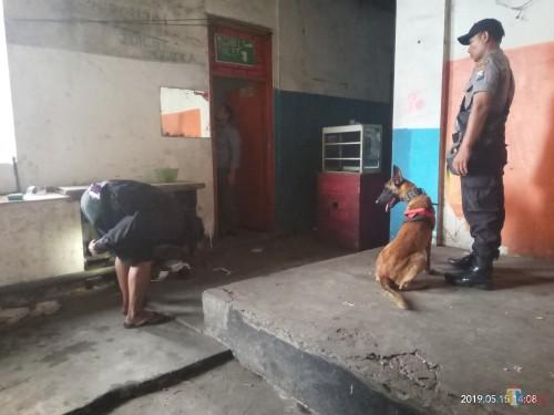 Anjing K9 yang sempat mengendus bau masuk ke toilet (Anggara Sudiongko/MalangTIMES)
