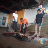 Inilah Kasus Mutilasi Paling Sadis dari Tahun ke Tahun di Indonesia, Beberapa Belum Terungkap