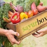 Ilustrasi penjualan online dalam sistem Sayurbox. (Ist)
