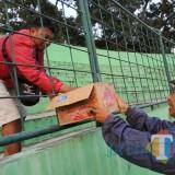 Arema FC Gelar Latihan, Aremania Galang Donasi