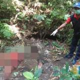 Berburu Tupai, Empat Warga Wagir Justru Temukan Mayat dengan Tangan Terputus
