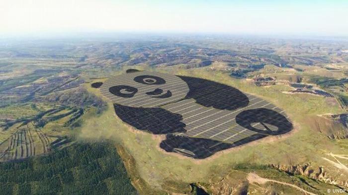PLTS berbentuk panda di China. (Foto: viawww.dw.com)