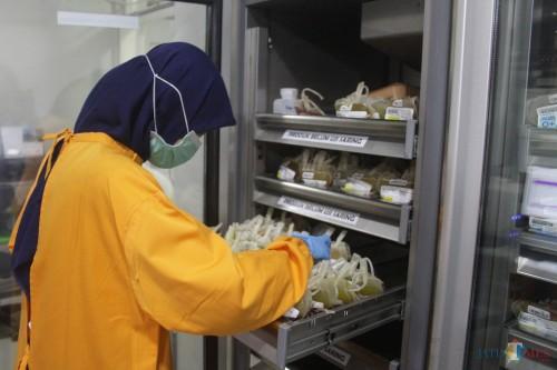 Petugas di UTD PMI Kota Malang tengah melakukan pengecekan stok darah. (Foto: Nurlayla Ratri/MalangTIMES)
