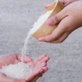 Ilustrasi (Foto: Shutterstock.com)