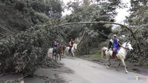 Kondisi jalan di kawasan Taman Nasional Gunung Bromo saat terjadi erupsi pada Maret 2019 lalu. (Foto: Nurlayla Ratri/MalangTIMES)