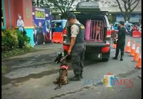 Unit K9 Polres Malang Kota yang ikut disiagakan dalam pengamanan arus mudik Lebaran 2019 di Stasiun Kotabaru. (Foto: Dokumen MalangTIMES)