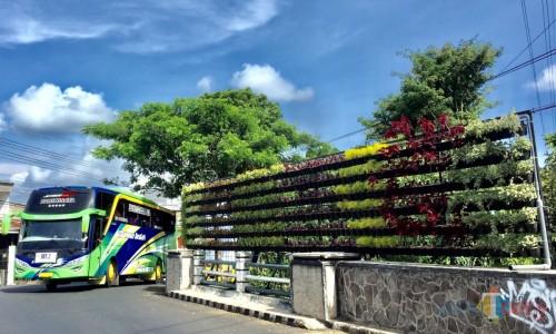 Vertical Garden di Jembatan Jalan Protokol Kota Batu. (Foto: Irsya Richa/MalangTIMES)