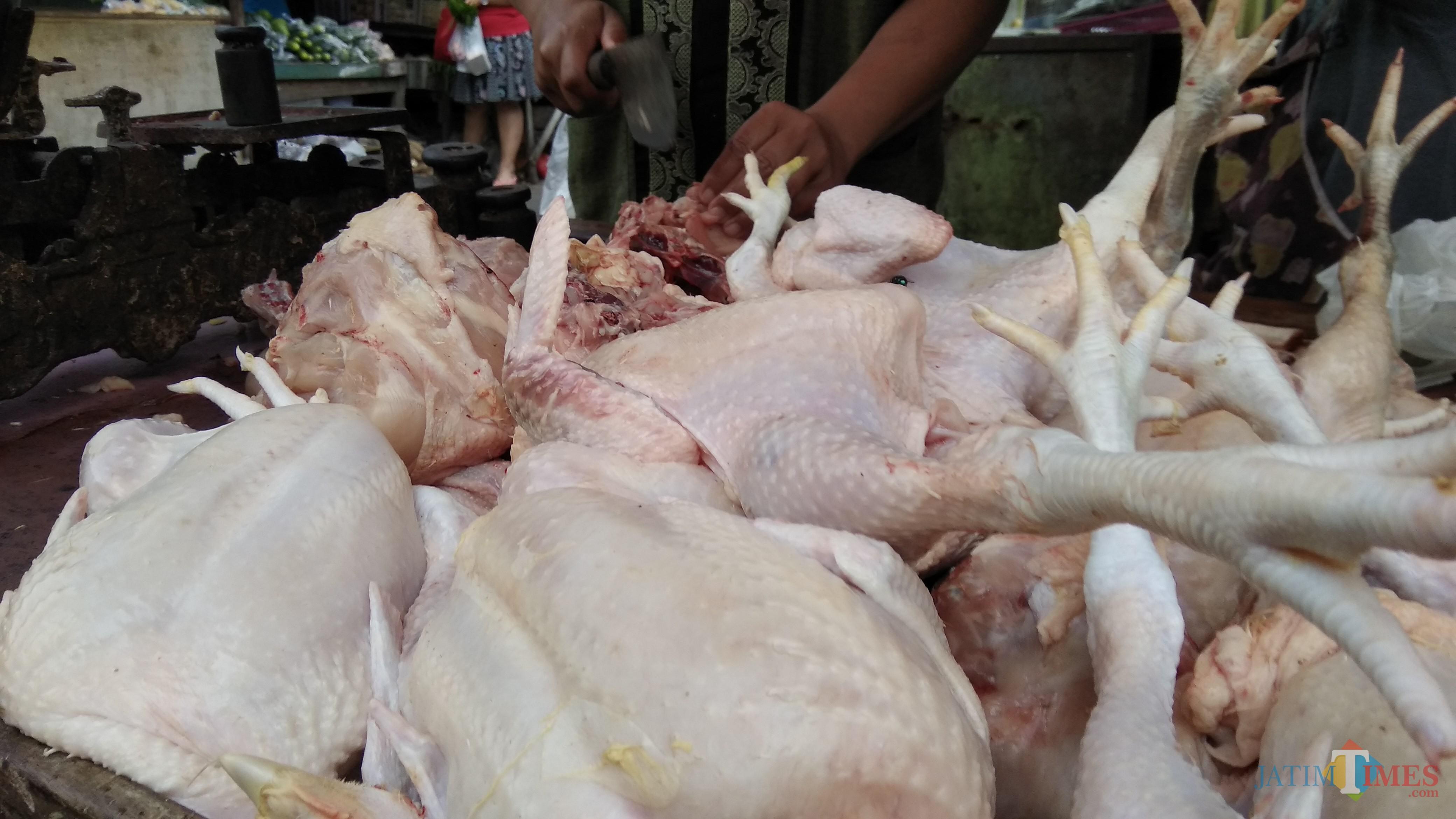 Pedagang ayam tengah melayani pembeli di Pasar Blimbing, Kota Malang. (Foto: Nurlayla Ratri/MalangTIMES)