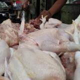 Jelang Lebaran Kupatan, Harga Daging Ayam Ras di Malang Melandai
