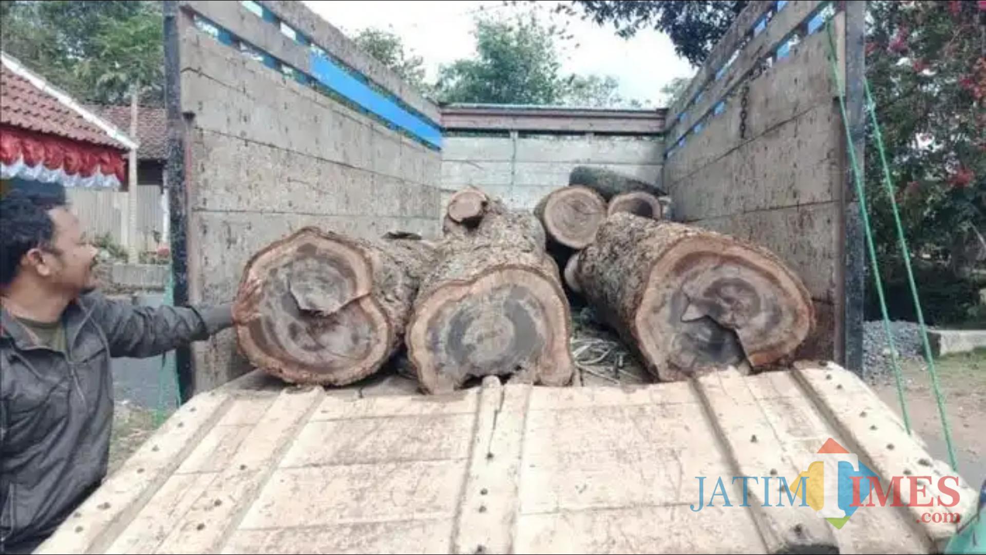 Petugas mengamankan kayu illegal logging di Sumbermanjing, Kabupaten Malang. (Foto: Dokumen Perhutani KPH Malang)