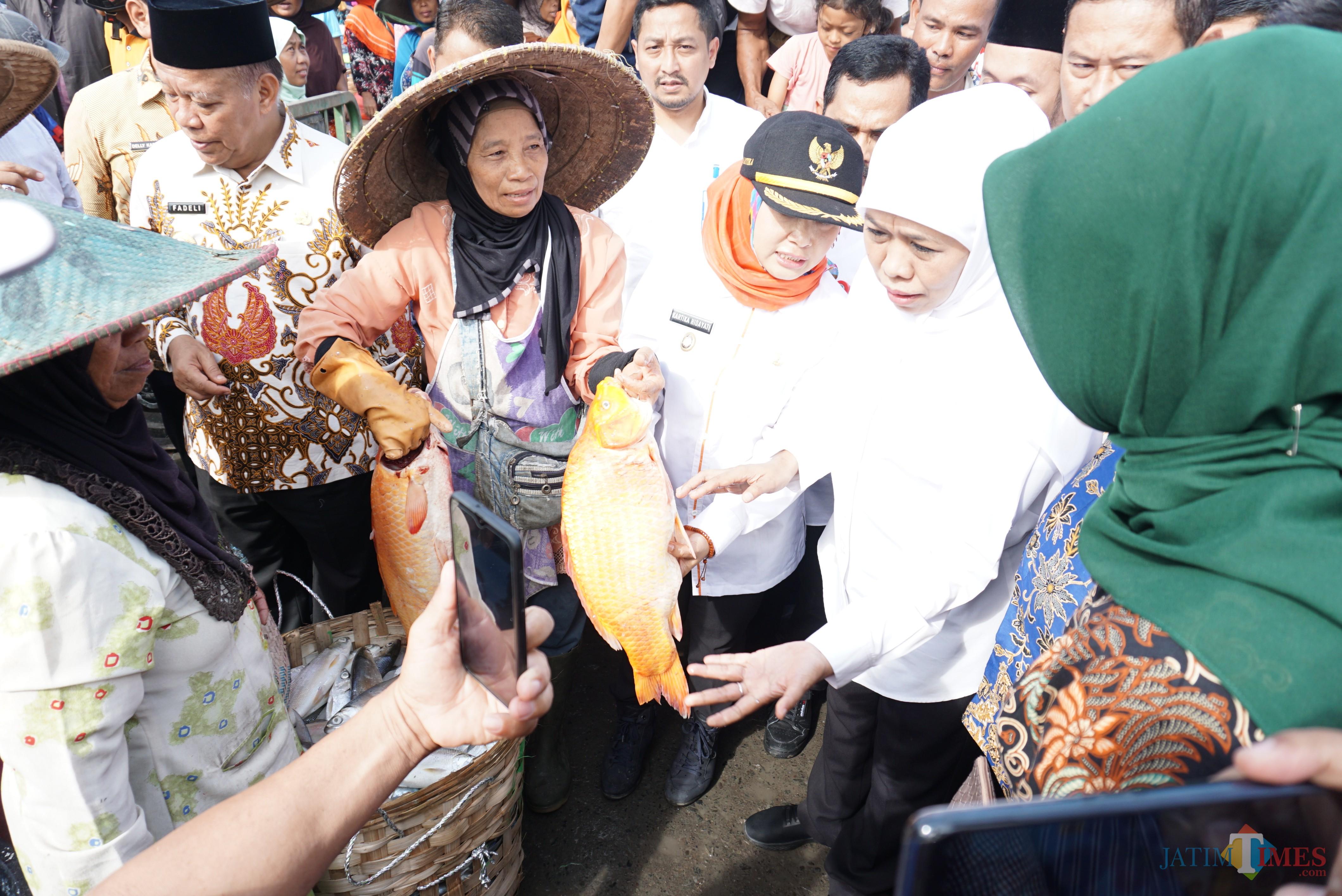 Gubernur Jatim Khofifah ketika sidak ke pasar pelelangan ikan di  Lamongan.