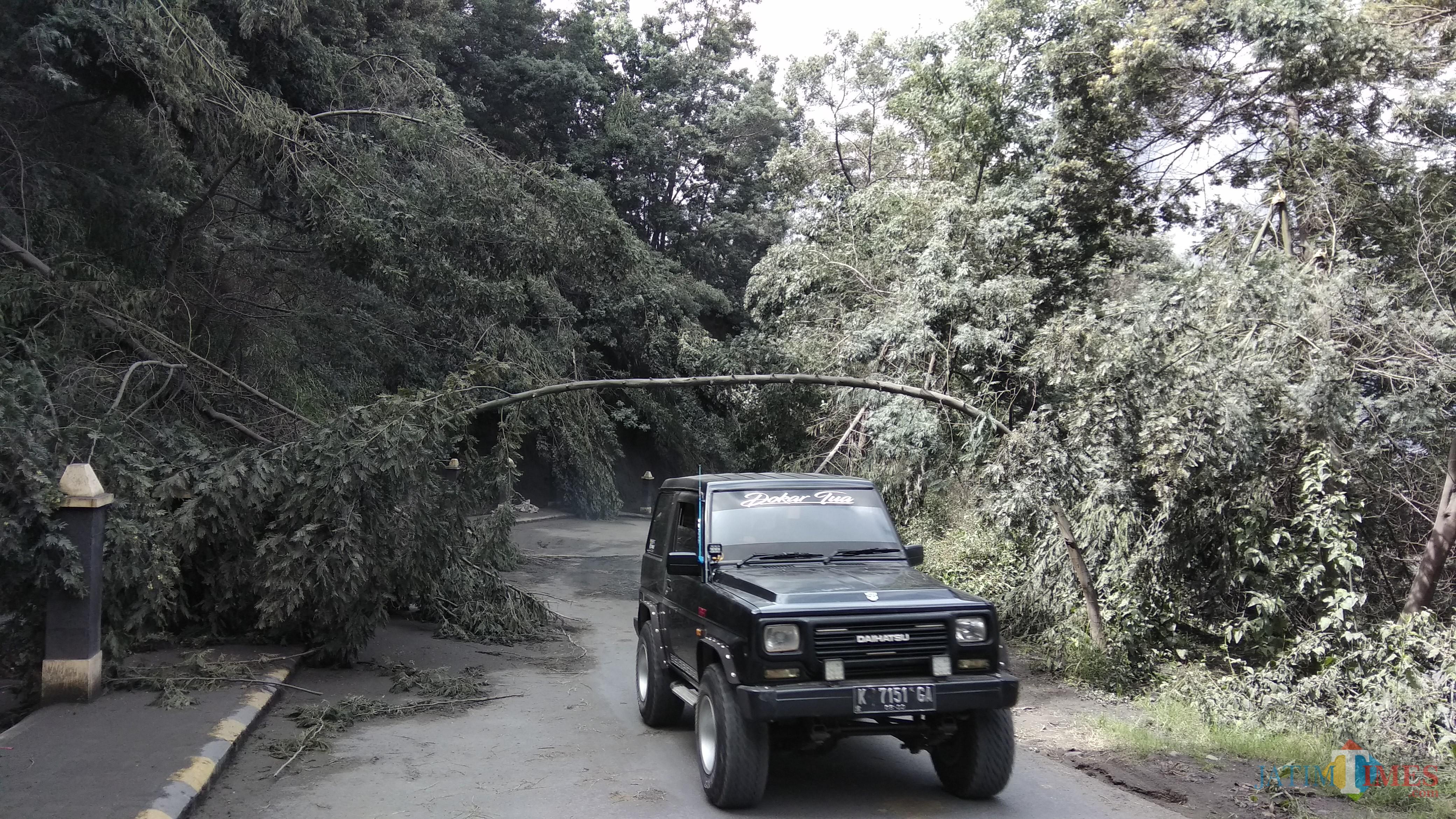 Ilustrasi, mobil Jeep yang tengah melintas di kawasan wisata Gunung Bromo pada Maret lalu. (Foto: Nurlayla Ratri/MalangTIMES)