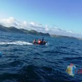 Tim SAR menyisir lautan mencari korban tenggelam di Pantai Pangi.