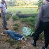 Pemuda bernama Essa ditemukan tewas di persawahan