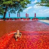 Kolam renang darah (istimewa)
