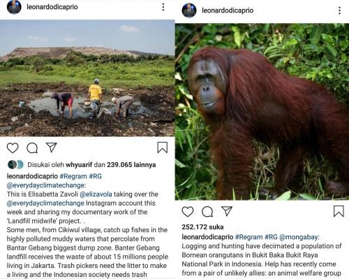 Tangkapan layar unggahan Leonardo Dicaprio yang menyoroti Indonesia. (Foto: Instagram)