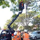 Petugas Disperkim Bidang PJU yang melakukan  perawatan PJU tematik di Jalan Ijen (Anggara Sudiongko/MalangTIMES)