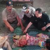 Korban Devinta, bayi dua tahun yang ditemukan tewas di Sungai Klantur, Bungur Kecamatan Karangrejo (Foto : Dokpol / TulungagungTIMES)