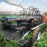 Para Petani Bakal Baper Lihat Mesin Pemanen Super-Cepat Ini