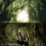 Keindahan Jawatan Benculuk yang nyaris persis dengan Hutan Frangon The Lord of The Rings. (Foto: Istimewa)