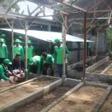 Para petani mempelajari langsung pembuatan pupuk kascing (Foto : Aunur Rofiq/BlitarTIMES)