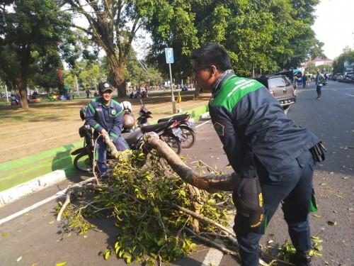 Squad Poltam yang tengah sibuk membersihakn sisa dahan pohon berigin yang patah (Disperkim for MalangTimes)